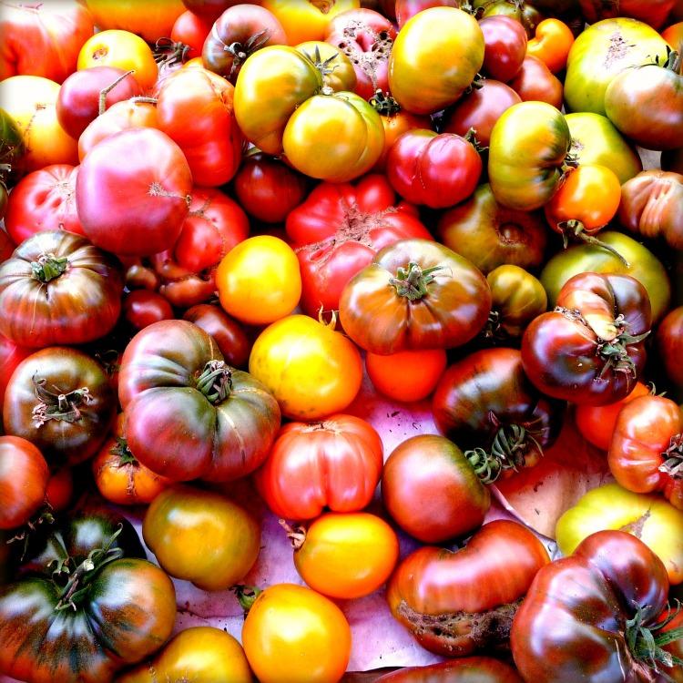 Heirloom Tomatoes TasteFood