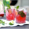 Blackberry Spritzer tf
