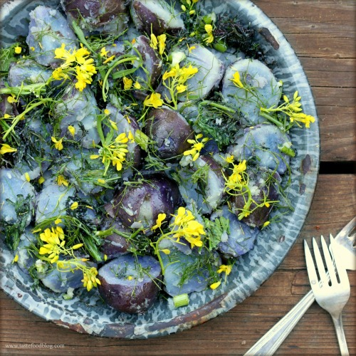mustard blue potato tastefood
