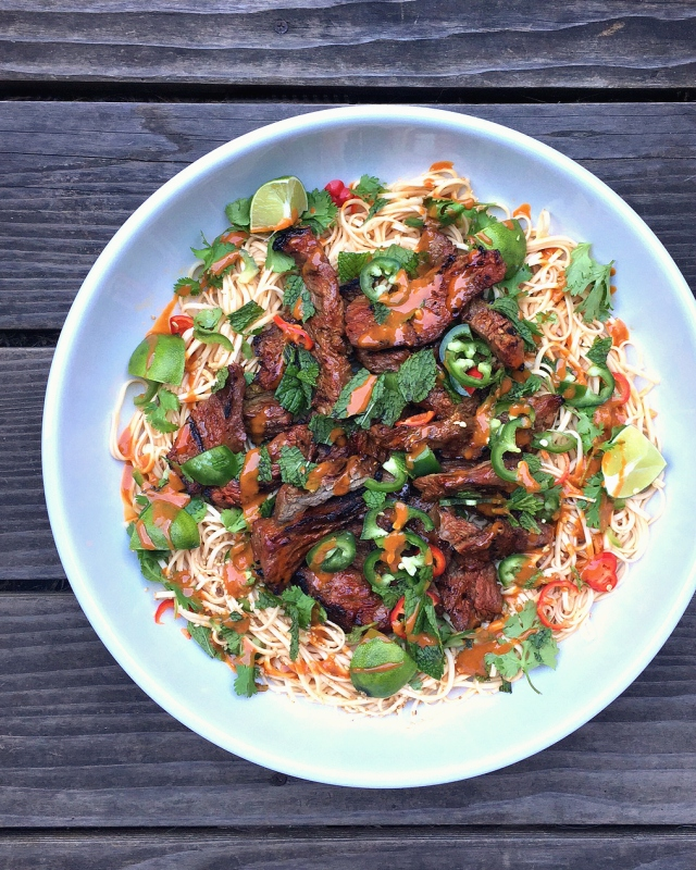 Marinated Skirt Steak Noodles - one dish dinners